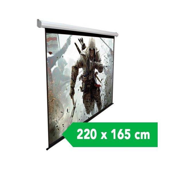 """Telon Mural Dinon 2,20 Ancho x 1,65 Alto M 110"""" Diagonal"""
